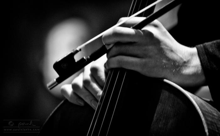 cello- hands- cuerdas- manos- nina peña