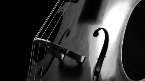 cello- cuerdas- cuerpo- articulo- nina peña - libros mas recomendados en castellano - descargar -