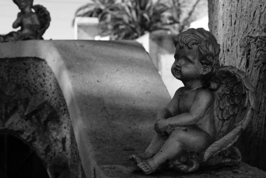 nina peña - ángel- cementerio - libros recomendados