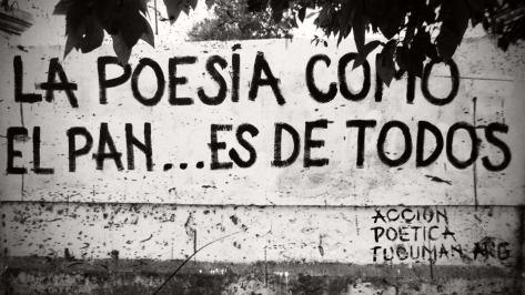 nina peña - poesía - muro - accion poetica